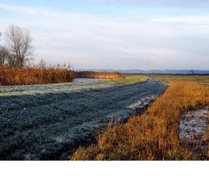 http://www.buro-lino.nl/wp-content/uploads/2013/12/Bergermeerpolder-beeld-4.jpg