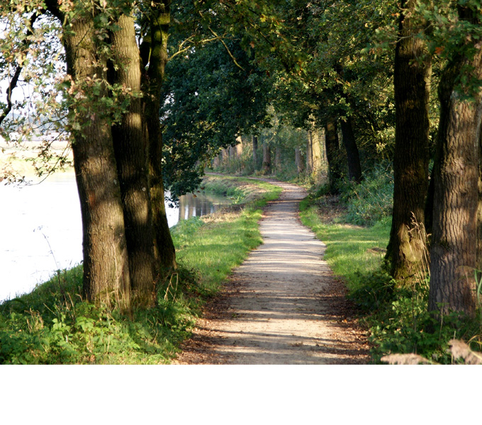http://www.buro-lino.nl/wp-content/uploads/2013/12/Heeswijk-beeld-4.jpg