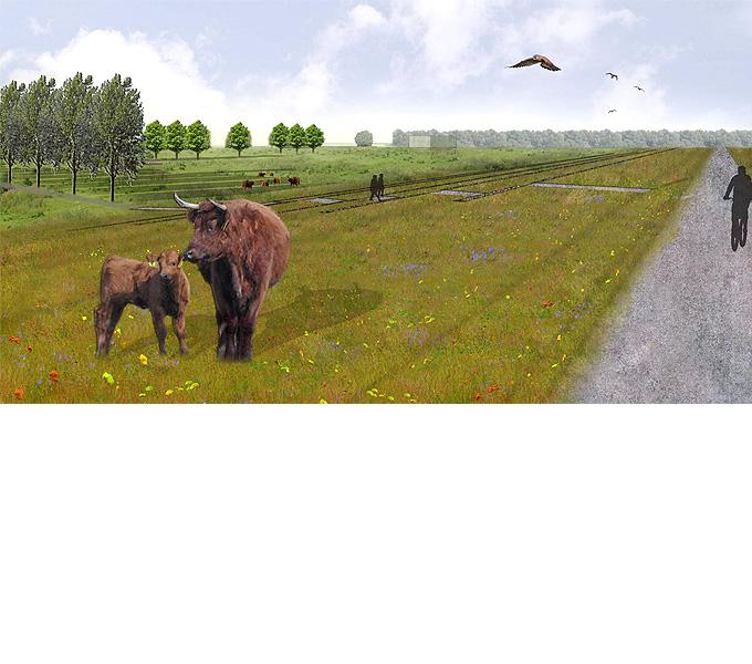 http://www.buro-lino.nl/wp-content/uploads/2013/12/Munnikeland-beeld-3.jpg