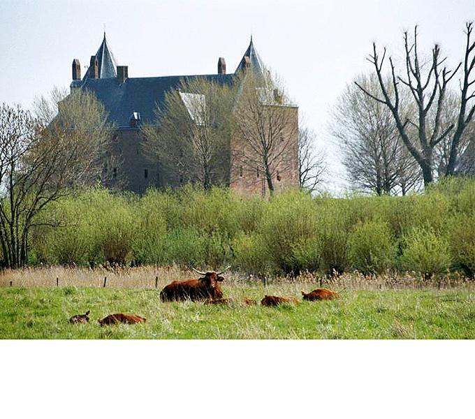 http://www.buro-lino.nl/wp-content/uploads/2013/12/Munnikeland-beeld-5.jpg