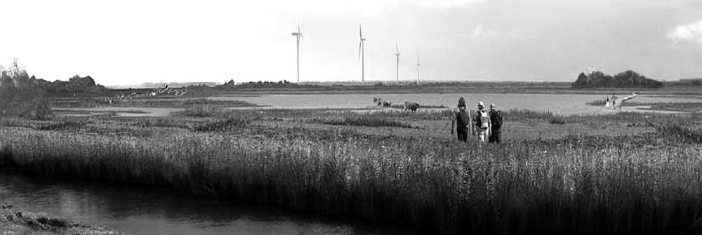 http://www.buro-lino.nl/wp-content/uploads/2013/12/Westvaardersplassen-header.jpg